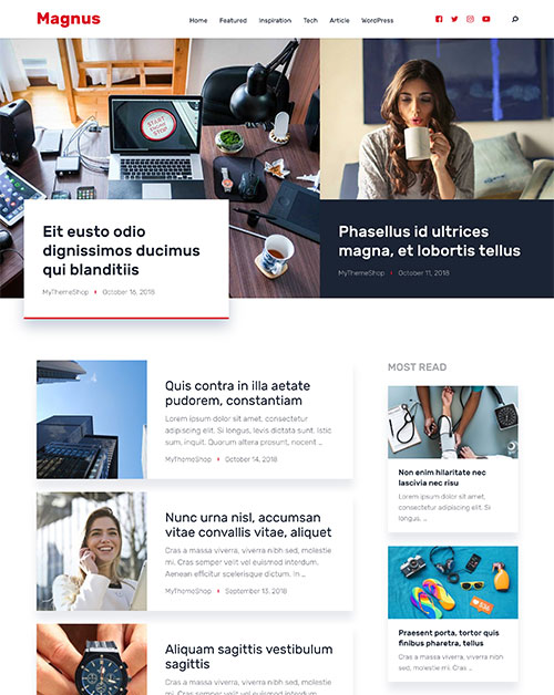 Magnus - Aesthetic WordPress Theme