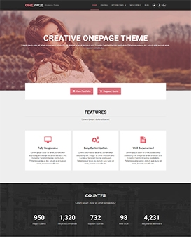 OnePage Lite – Free WordPress Theme