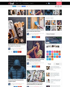 Viral – WordPress Theme For Social Media Marketers