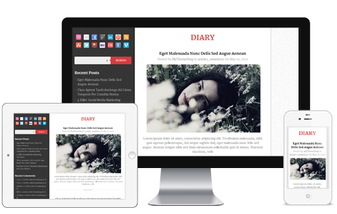 Diary Free Responsive blog WordPress Theme Free Download
