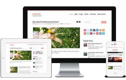 PureView – Minimalistic WordPress Theme  Free Download