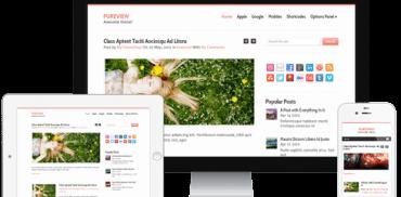 Pureview WordPress Theme