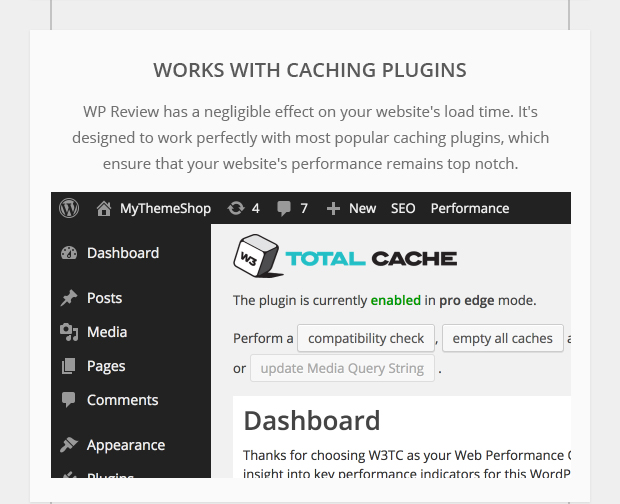 Works with Caching Plugins