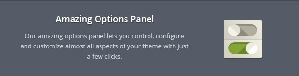 Our amazing options panel lets you control, configure and customize almost all aspects of your theme with just a few clicks.