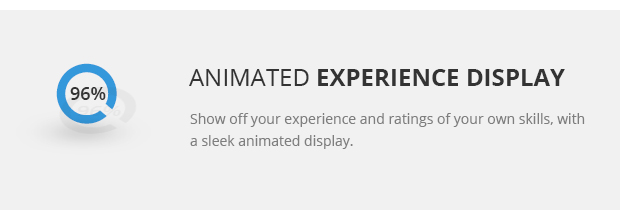 Animated Experience Display