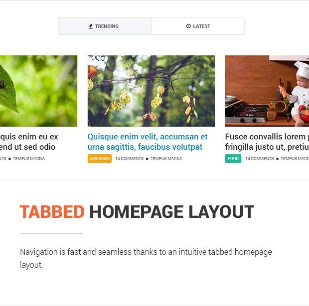 Tabbed Homepage Layout