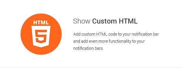 Show Custom HTML