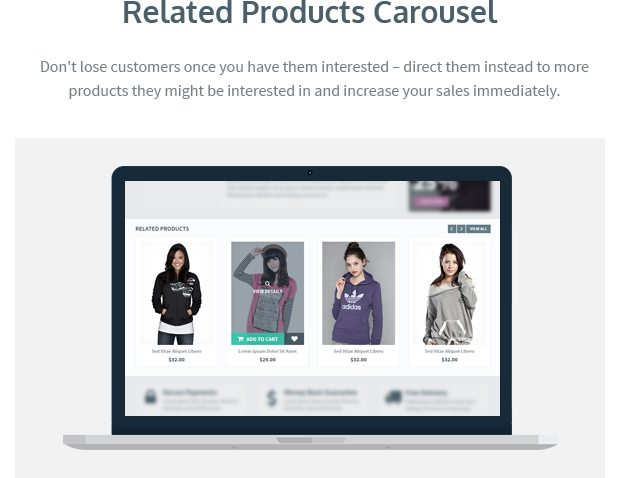 Related Products Carousel