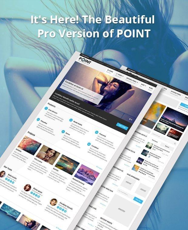 PointPro-Responsive