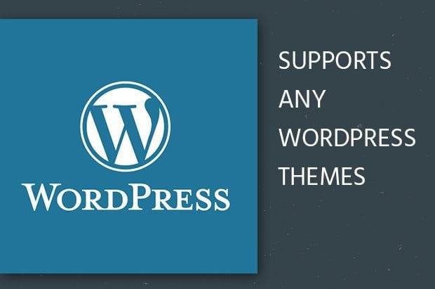 Supports Any WordPress Theme