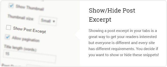 Show Hide Post Excerpt