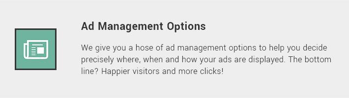 Ad Management Options
