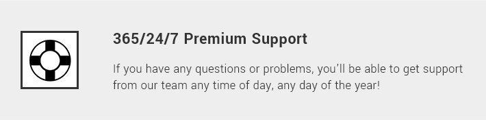 365/24/7 Premium Support