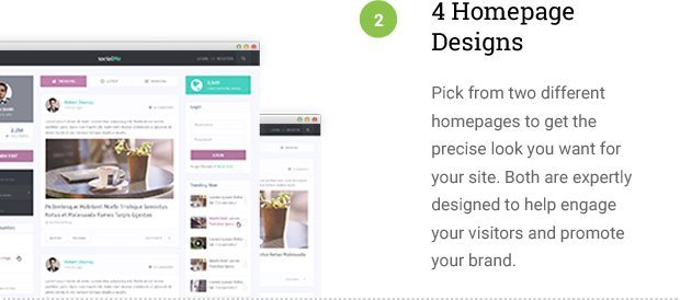 4 Homepage Options