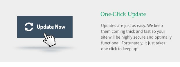 Updates are just as easy. We keep them coming thick and fast so your site will be highly secure and optimally functional. Fortunately, it just takes one click to keep up!