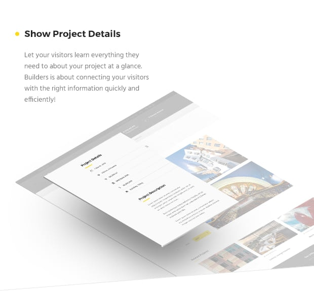 Show Project Details
