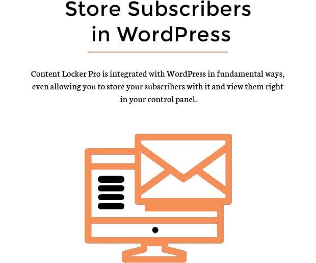 Store Subscribers in WordPress