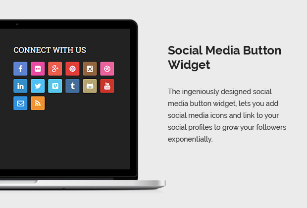 Social Media Button Widget
