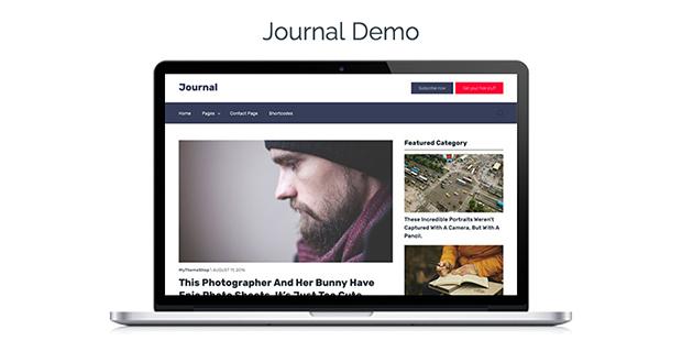 Clean Theme Journal Demo
