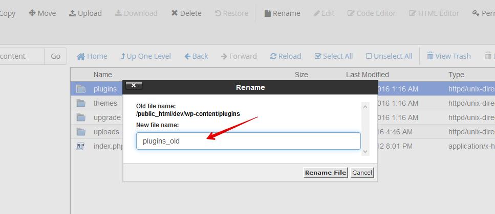 Rename Plugins Folder _wp-content_plugins