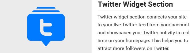 Twitter Widget Section