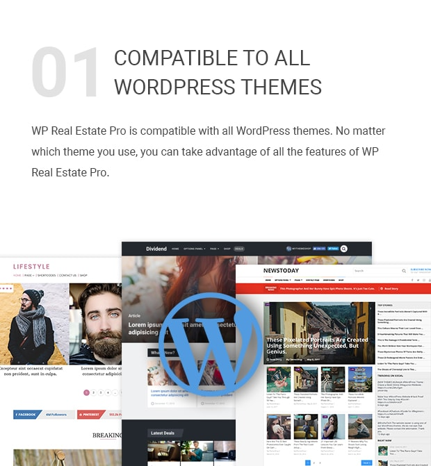 Compatible With All WordPress Themes